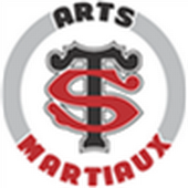 stade toulousain arts martiaux