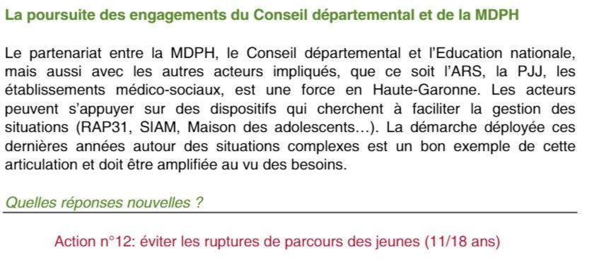extrait schéma départemental CD 31 sur les jeunes