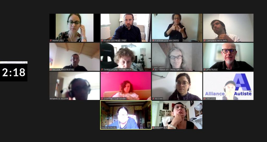conférence zoom du 16 aout avec Jonas Ruskus rapporteur du comité des droits des personnes handicapées le 27 juillet 2021 et des associations françaises dont Handi-social